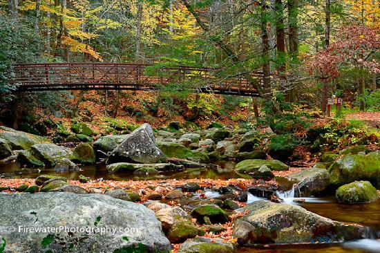 Γκρίνβιλ, Νότια Καρολίνα: Hiking at Jones Gap State Park, Greenville County, SC