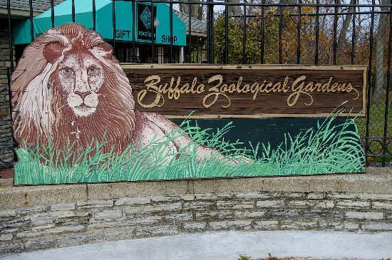 Entrance Buffalo Zoo Picture Of The Buffalo Zoo Buffalo Tripadvisor