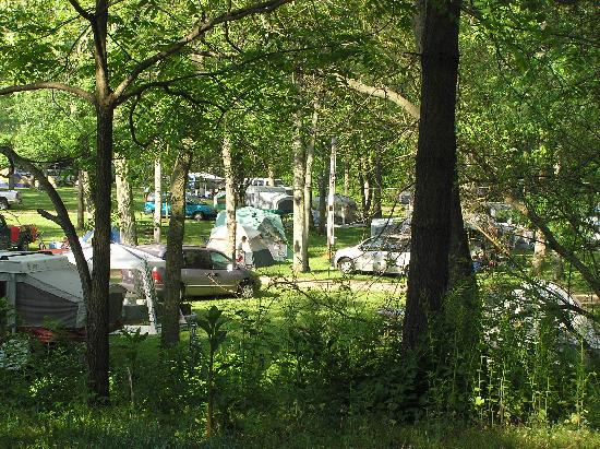 Eby's Pines Campground: Eby's Pines RV Park