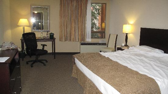Windemere Hotel and Conference Center : Our room with king bed.