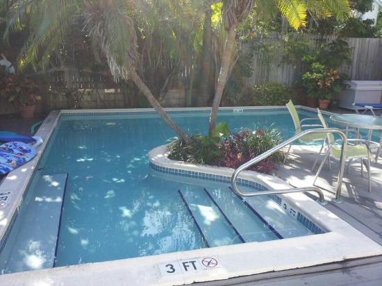 Marrero's Guest Mansion: Pool mid afternoon