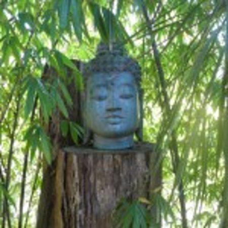 Secret Buddha Cafe: ssshhh it's a secret