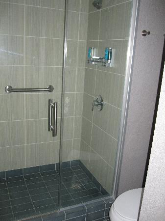 Aloft Tallahassee Downtown: doccia - bel design. Peccato manchi il tubo per la doccia: l'acqua esce solo dall'alto
