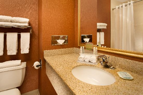 Holiday Inn Express Hotel & Suites Chambersburg: Guest Room Bath