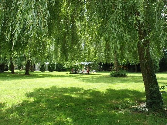 Aire Naturelle de Camping du Domaine de Laverriere: natural aera for camping, a natural paradise