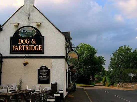 The Old Dog: Dog & Partridge