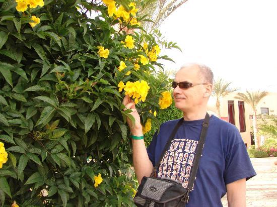 Tamra Beach: Благоухающий февраль