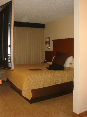 Hyatt Place Nashville/Hendersonville: Hotelzimmer Bett