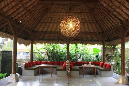 Villa Areklo: reception