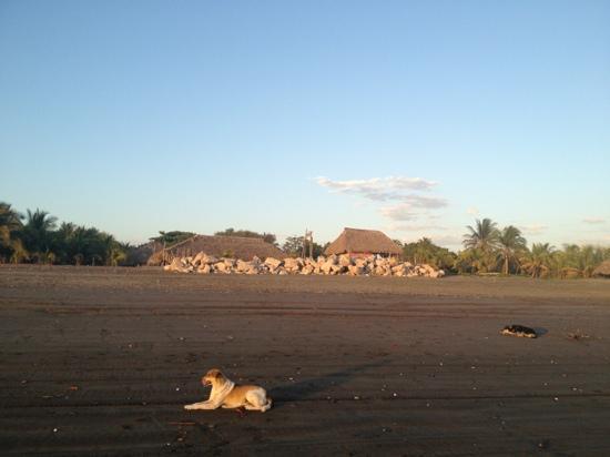Rancho Tranquilo: beachfront area