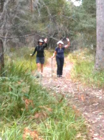 Maria Island National Park: On the path to Haunted Bay