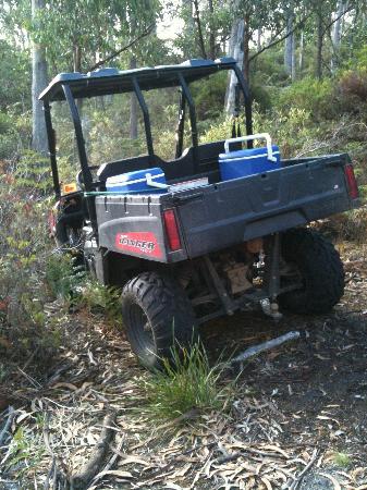 Maria Island National Park: Tasmanian Devil researchers