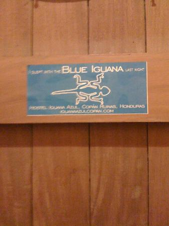Iguana Azul: I was there...