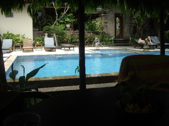 بيوري سادينج هوتل: Pool