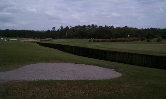 Grand Cypress Golf Club: A few burns abound - narrow and sneaky