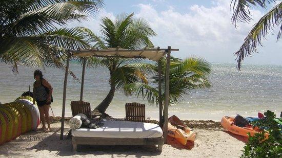 Web cam view - Picture of Maya Chan Beach, Mahahual