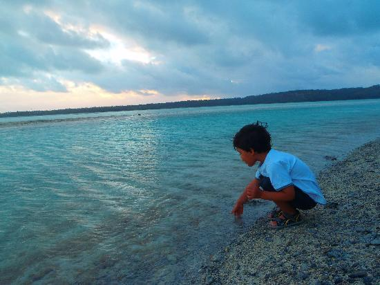 Ranginui's Retreat: afternon stroll next to ranginuis