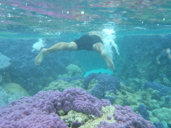 Black Pearl Charters: one of the spots awe got to explore