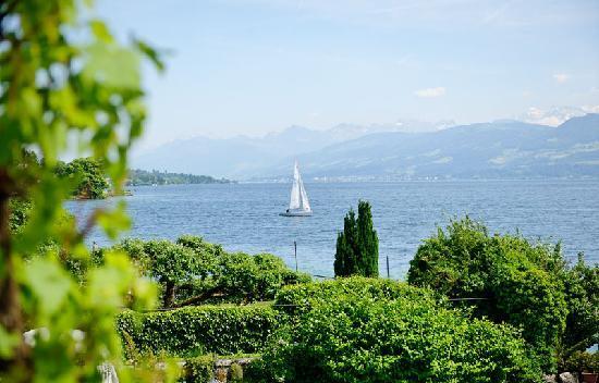 Hirschen am See: Ausblick