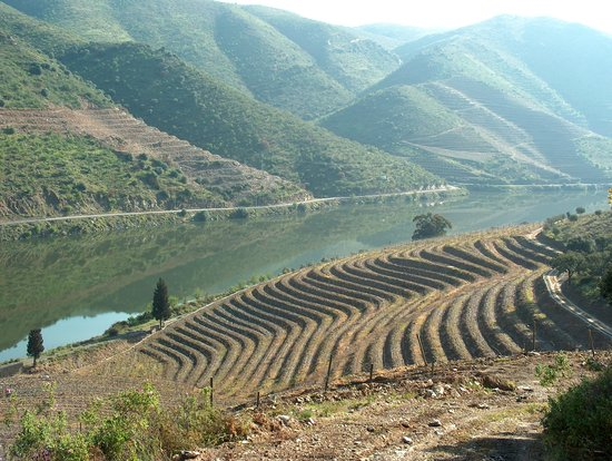 Northern Portugal, Portugal: Douro, Wine Region