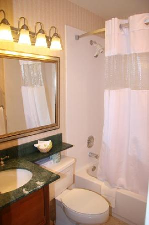 Adria Hotel And Conference Center: Guestroom Bathroom
