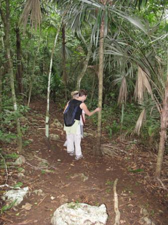 Mariposa Jungle Lodge: Mariposa's jungle trail