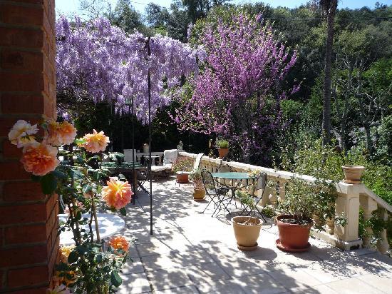 Mas Pallares : Grande Terrasse in Spring