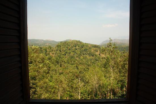 Citrus Thekkady Wild Corridor: View from room.
