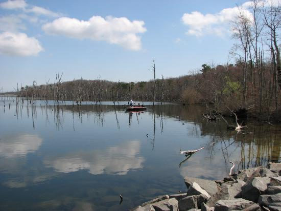 Manasquan Reservoir Visitor Center: Reflection of cloud and boat on a sunny Spring day