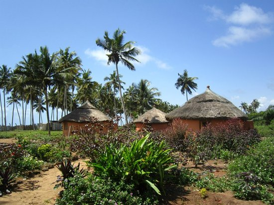Stumble Inn: The huts