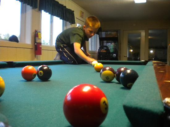 Parkwood Lodge: Game room with pool table & video games