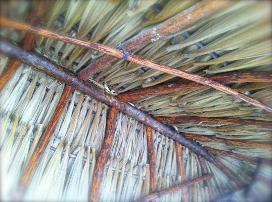 Yucatan Mayan Retreat, Ecohotel & Camping : ceiling