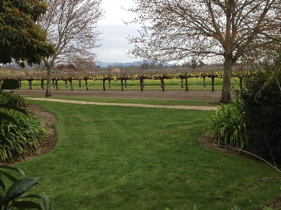 Vintners Inn: view from our patio