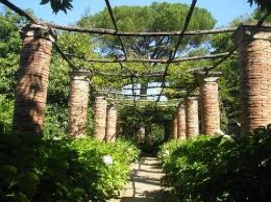 Viale incantato foto di giardini di villa cimbrone ravello tripadvisor - Giardini di villa cimbrone ...