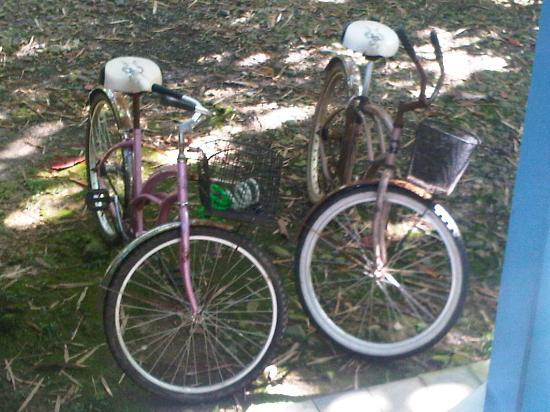 Aguas Claras Beach Cottages: Our bikes