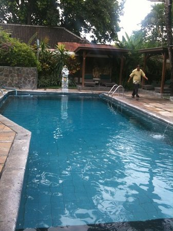 Respati Bali Bougainville Garden: beautiful and cold pool