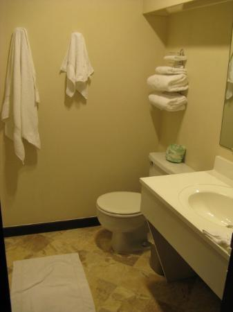 Coachman Inn: Clean bathroom