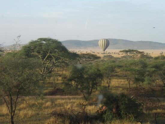 Seronera Wildlife Lodge : Hot air balloons over the Serengeti