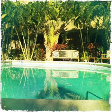 La Casa Del Mar: Pool