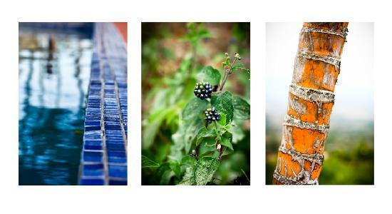 Vista Atenas Bed & Breakfast: Photo selection_triptych_B&B Vista Atenas_Atenas_Costa Rica_hotels