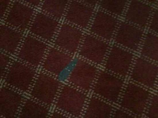 Extended Stay America - Orange County - Irvine Spectrum: stained carpet