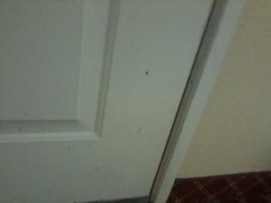 Extended Stay America - Orange County - Irvine Spectrum: dirty door