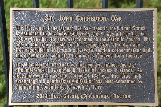 Cathedral of St John the Evangelist: Plaque