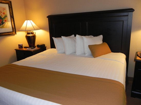 Gaylord Texan Resort & Convention Center: Our room