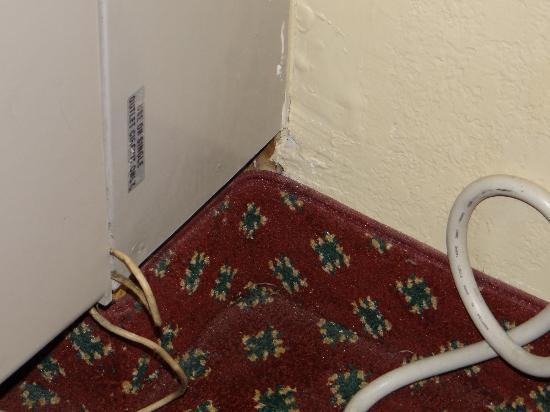 Comfort Suites Jacksonville: closer...