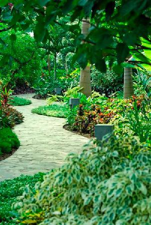 Princess D'An Nam Resort & Spa: Walk through our Ginger Garden