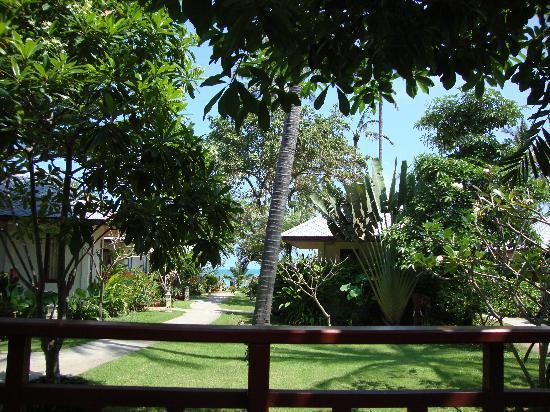 Promtsuk Buri: Our verandah view!!