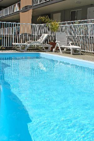 Albacore Apartments : Heated swimming pool