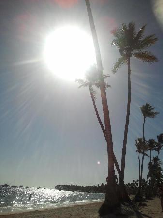 Dreams Palm Beach Punta Cana: coucher de soleil sur la plage