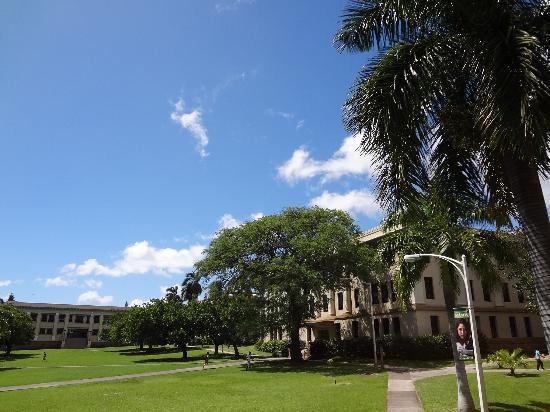ハワイ大学マノア校, 敷地内の様子
